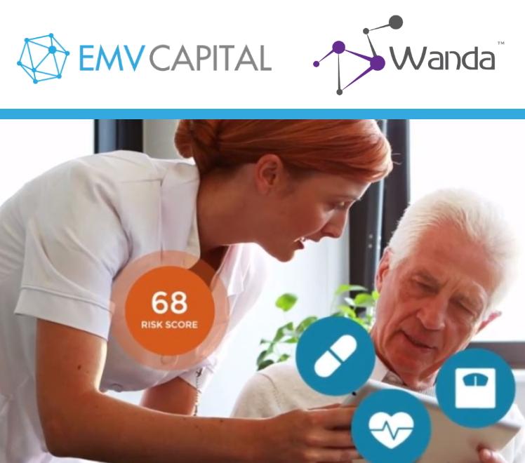 Wanda Investment